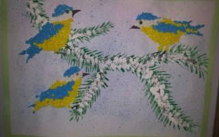 Трафарет синички для рисования