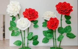 Большие объемные цветы из фоамирана