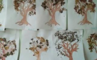 Ветка дерева шаблон для аппликации