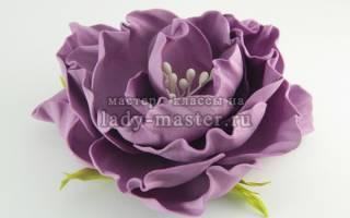 Шаблоны розы из фоамирана распечатать