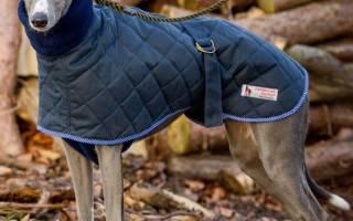 Одежда для собак выкройки схемы с размерами