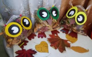 Шаблон совы для поделки из листьев распечатать