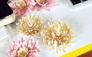 Трафарет хризантемы из бумаги