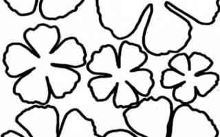 Трафареты для больших цветов из бумаги a4