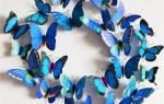 Трафарет ажурной бабочки из бумаги