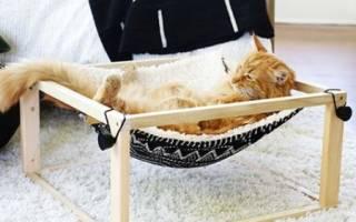 Как сделать гамак для кошки
