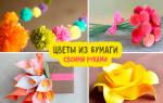 Композиции из бумажных цветов