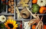 Картина из природных материалов осень