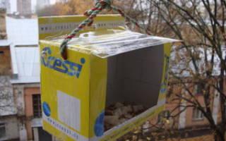 Кормушка для птиц из картонной коробки