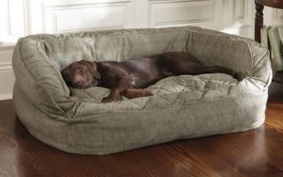 Как сделать лежак для собаки
