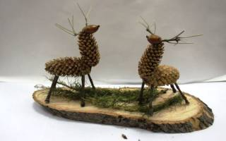 Поделки из природного материала на картоне