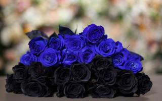 Какие цветы дарят на похороны?