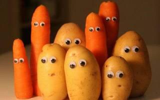 Поделки из картофеля на выставку в школу