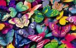 Бабочки это насекомые которые и продолжить
