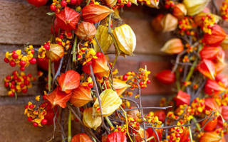 Веночек из осенних листьев